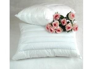千年健儿童荞麦壳保健枕 教您选择合适的宝宝枕