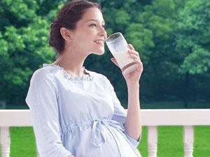 雅倍健孕妇叶酸蛋白质粉贴心呵护孕期妈妈
