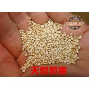 2014年秘鲁新鲜优质藜麦即将上市望广大经销商前来订购