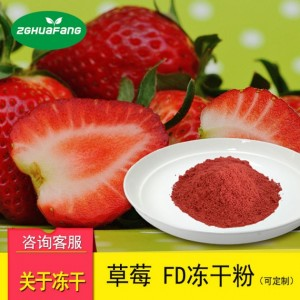 冻干草莓粉 冻干果蔬粉冻干食品脱水果蔬航天食品冻干产品
